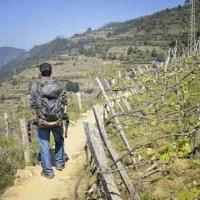 Quechua Escape 50: Uno zaino multi uso per il backpacker amante della fotografia