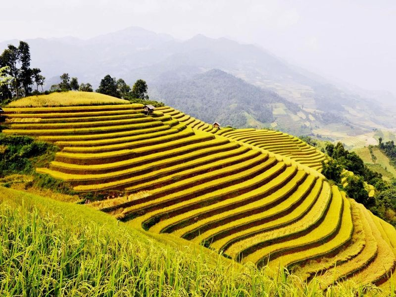 The reasons why you should travel in Ha Giang 2