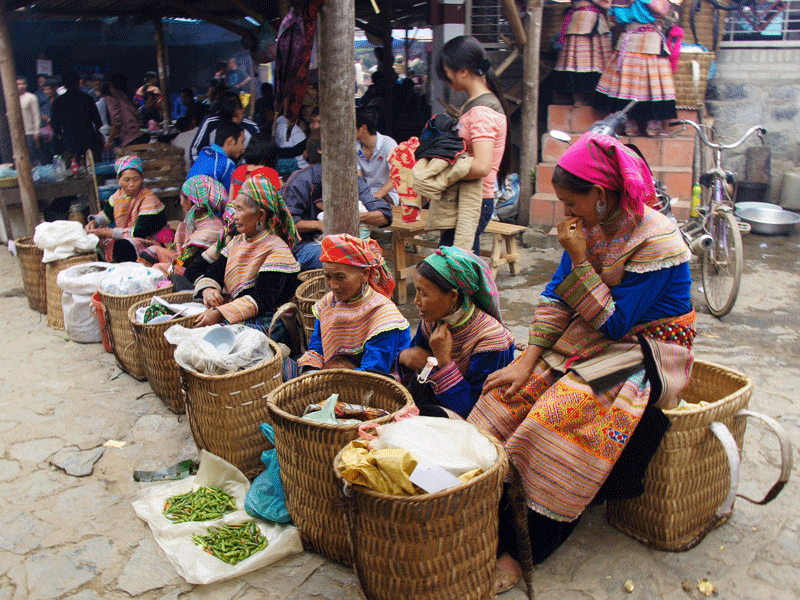 Sapa - Bac Ha - Can Cau Market 3 Days | Trekking Sapa Tours