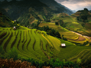 10 Things you need to know to travel in Sapa at best