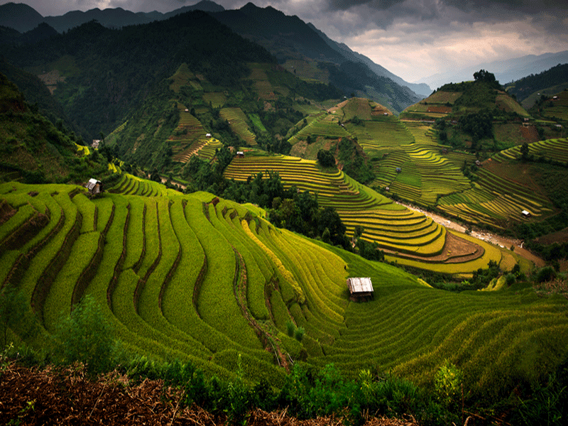 Enjoy The Fantastic Sapa Day Tours
