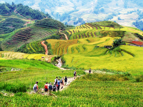 Cat Cat Village Sapa Day Tours– Cat Cat Village Day Tour Muong Hoa