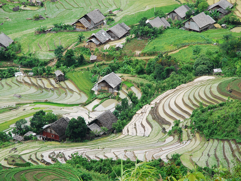 Sapa Homestay Adventure Tours
