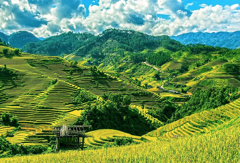 Green and Beautiful terraces of Mu Cang Chai, among the best places to visit in North Vietnam
