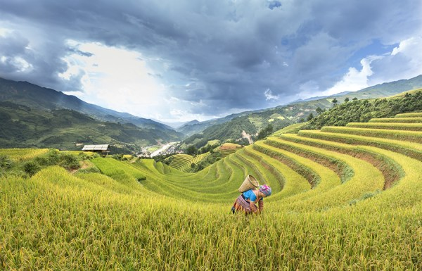 Nam Cang village: Where visitors should drop by when traveling Sapa