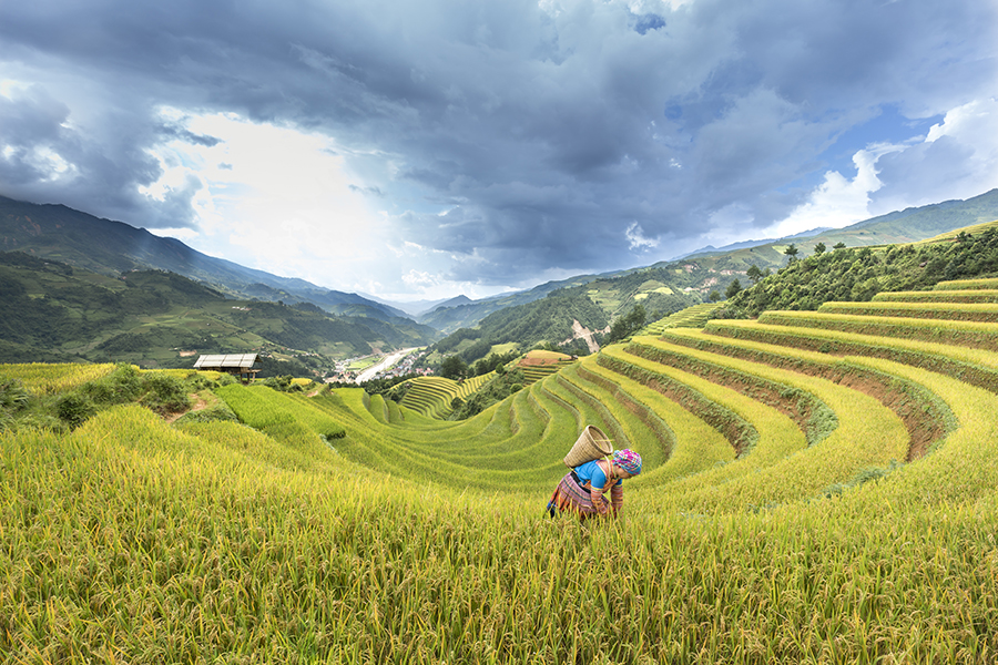 10 Things you need to know to travel in Sapa at best | Trekking Sapa Tours
