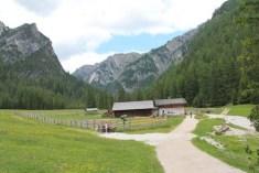 I rifugio della valle foresta