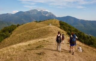 Via Monte Bardone