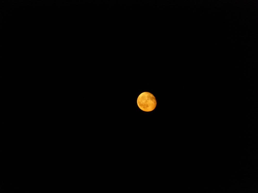 Sale la luna  e