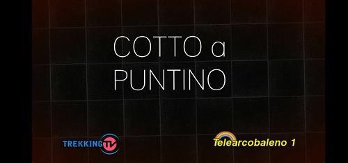"""Fuoco ai fornelli,ritorna la trasmissione """"Cotto a Puntino-Le ricette di Olga"""""""