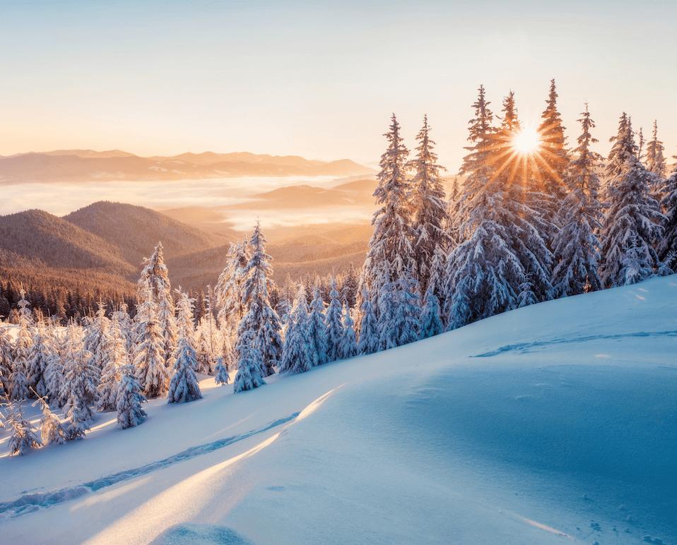 Lapland Ice Hotel & Igloos