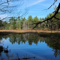 Quabbin Reflections