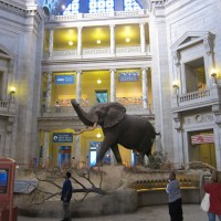 Smithsonian Natural History Museum