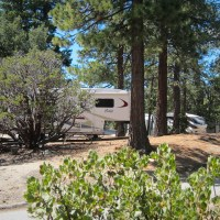 Nicely-spaced campsites