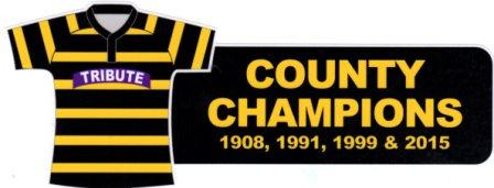 champions car sticker a