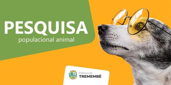 Tremembé inicia estudos para projetos de controle populacional de cães e gatos