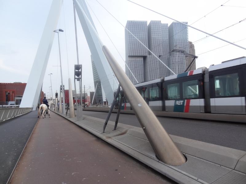 z Rotterdam, opzicht