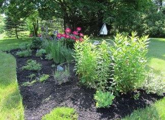 Agrowłóknina – rewelacyjny sposób na chwasty