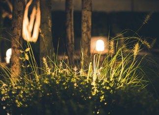 Oświetlenie zewnętrzne domu i ogrodu