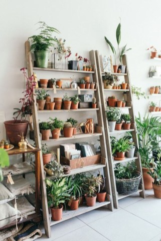 Beautiful Plant Decors For Your House 26