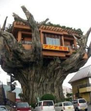 This Japanese House Looks Peculiar But Beautiful 06