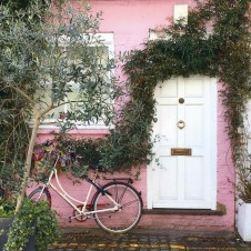 Beautiful Facades With Vines And Climbers 37