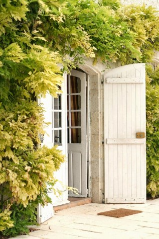 Beautiful Facades With Vines And Climbers 48