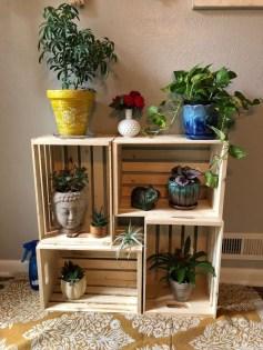Magnificient Indoor Decorative Ideas With Plants 39