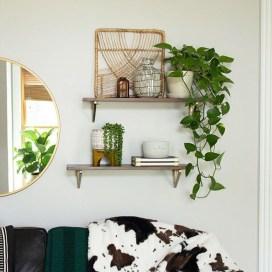 Magnificient Indoor Decorative Ideas With Plants 46