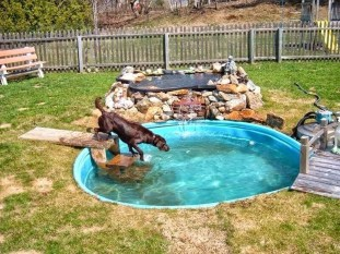 Comfy Diy Backyard Projects Ideas For Your Pets 26