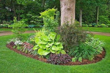 Adorable Flower Beds Ideas Around Trees To Beautify Your Yard 13