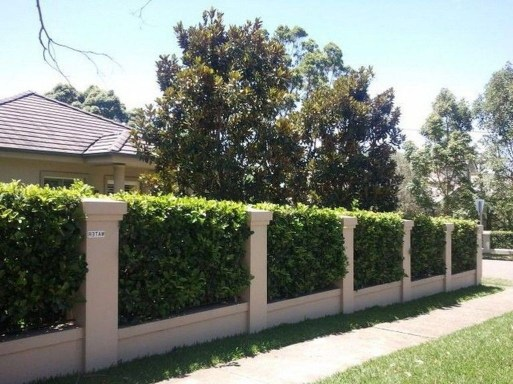 Dreamy Bamboo Fence Ideas For Small Houses To Try 44