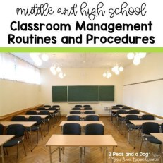 Elegant Classroom Design Ideas For Back To School 13