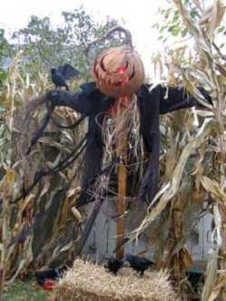Newest Diy Outdoor Halloween Decor Ideas That Very Scary 33