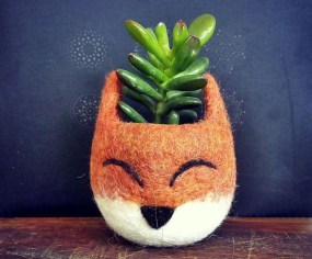 Rustic Houseplants Design Ideas That Are Safe For Animals 11