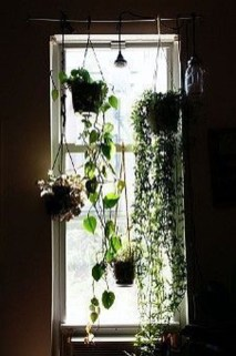 Lovely Window Design Ideas With Plants That Make Your Home Cozy 09