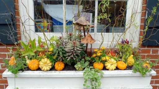 Lovely Window Design Ideas With Plants That Make Your Home Cozy 43