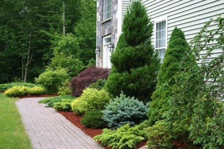 Pretty Front Yard Landscaping Ideas34