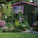 Awesome Shed Garden Plants Ideas02