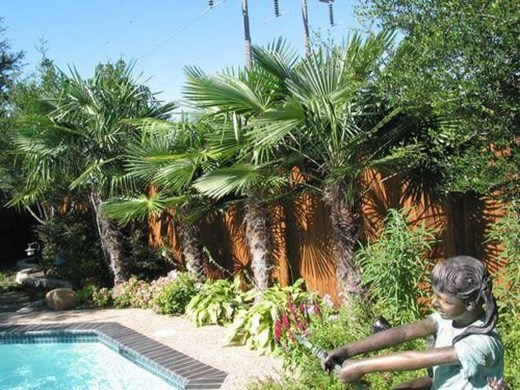 Wonderful Tropical Landscaping Ideas For Garden26