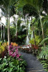 Wonderful Tropical Landscaping Ideas For Garden29