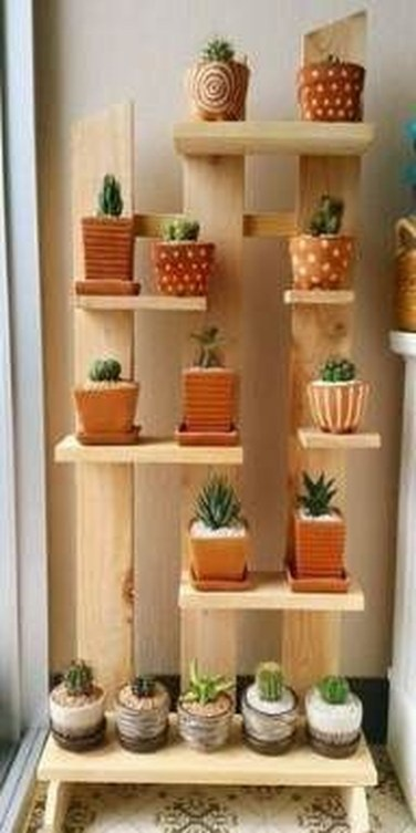 Cool Small Cactus Ideas For Interior Home Design08