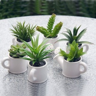 Cool Small Cactus Ideas For Interior Home Design25