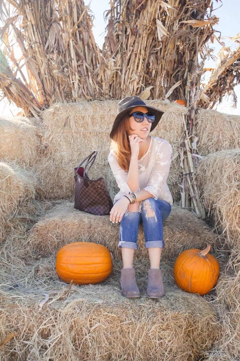 Chic Pumpkin Sweater Pumpkin Patch Sweater Trendy Fall Raglan Autumn Leaves /& Pumpkin Please Fall Off Shoulder Raglan