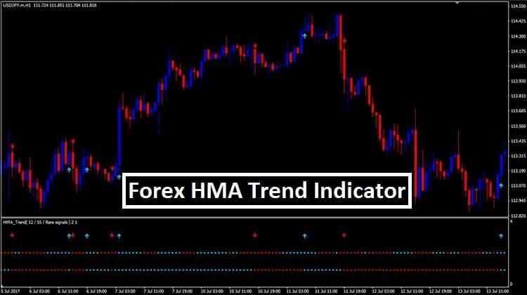 Forex hma indicator
