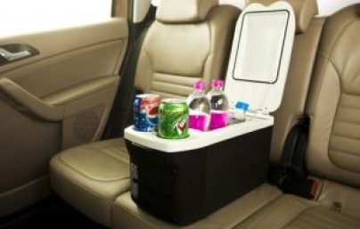 portable-car-fridge-warmer-8-litres-500x500