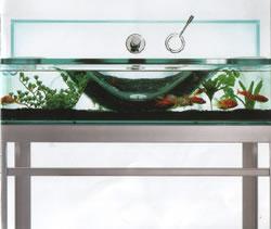 aquarium sink!