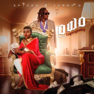 MUSIC: Spicey Ft. Terry G - Owo (Prod. LagosIgboboy)
