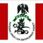 NDLEA Proposes Drug Tests For Ladies Before They Marry