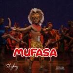Skyboy - Mufasa